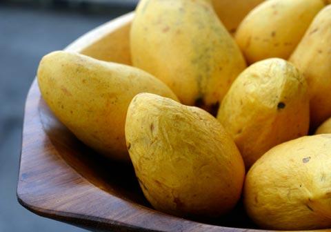 mango_lime_sorbet_mangoes